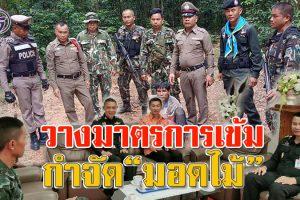 """แม่ทัพภาค 2 วางมาตรการกดดันกำจัด""""มอดไม้""""ตัดพะยูงทับลาน สั่งตรวจเข้มทุกพื้นที่ เฝ้าระวังไม่ให้มีการลอบตัดไม้ในป่าชุมชน!!"""